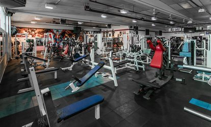 image for One-Week or One-Month Gym Membership at Panthers Gym