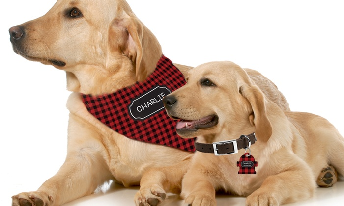 up to 67 off on personalized dog tag or bandana groupon goods