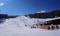 Ski-Tagespass für 1 Erwachsenen und 1 Kind, 1 oder 2 Personen, bei Götschen Skiliften (bis zu 42% sparen*)
