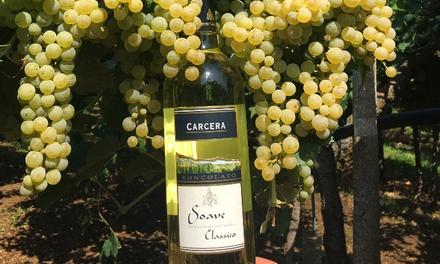 Degustazione di vino e tipicità a 16,90euro