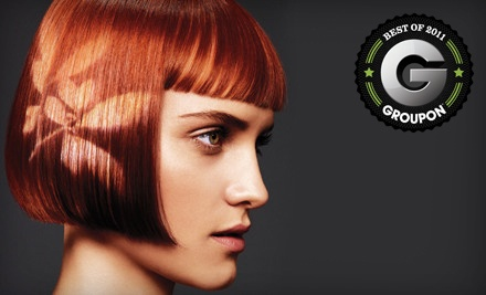 Haircut, Style, and Deep-Conditioning Treatment (a $110 value) - Vicara in Rancho Cucamonga