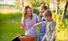 The Mosquito Authority - Downtown Knoxville: $28 for Up to One Acre of Mosquito Barrier Spray from The Mosquito Authority ($120 Value)