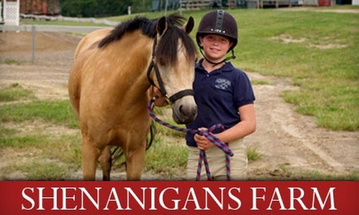 Shenanigans Farm - Addison: $55 for the Pony Princess Package at Shenanigans Farm ($130 Value)