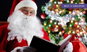 La Casa di Babbo Natale a Roma: La Casa di Babbo Natale a Roma - Fino a 4 ingressi al parco con spettacoli (sconto fino a 40%)