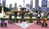 Chicago Segway Tours - Near North Side: $46 for an Evening Tour or Glide at Night Tour with Chicago Segway Tour (Up to $75 Value)