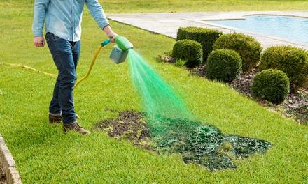Sistema di idrosemina canada green groupon for Groupon arredo giardino