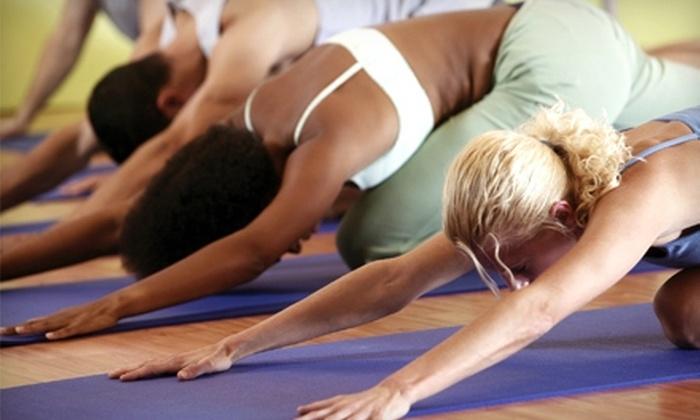 Trinity Yoga Studio - New Port Richey: 10 or 20 Yoga Classes at Trinity Yoga Studio in New Port Richey (Up to 73% Off)