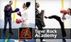 Tiger Rock Academy (Lincoln) - Multiple Locations: $38 for One Month of Unlimited Kickboxing Classes with Gloves at Tiger Rock Academy