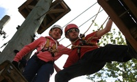 Aerial Extreme: Adventure Course Ticket for an Adult or Child at a Choice of Five Locations (Up to 42% Off)