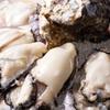 東京都/赤坂見附≪生牡蠣、刺身盛り、鯛煮付け、旬野菜と蟹の天麩羅、牡蠣土鍋飯など9品+飲み放題120分≫
