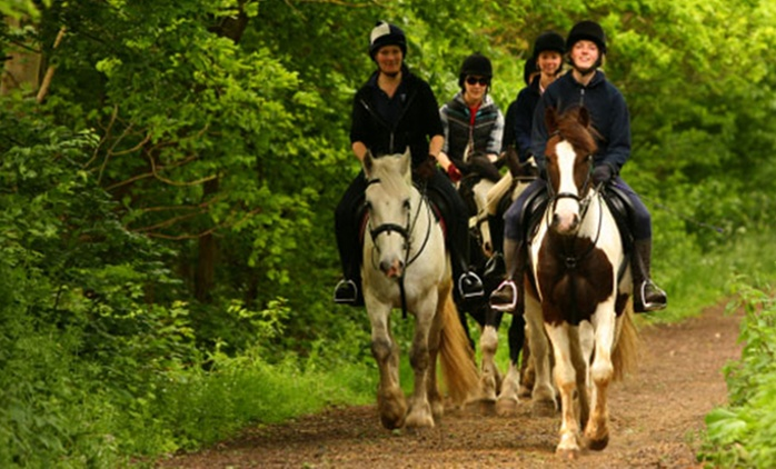 Horse Riding With Hot Drink Plus Cake for £39 at Trent Park Equestrian Centre (61% Off)