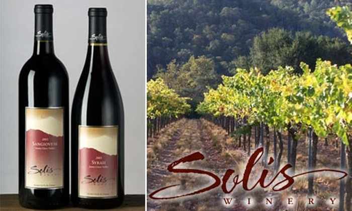 Solis Winery - Llagas-Uvas: $15 for a Wine Tasting for Two and One Bottle of Wine at Solis Winery (Up to $40 Value)
