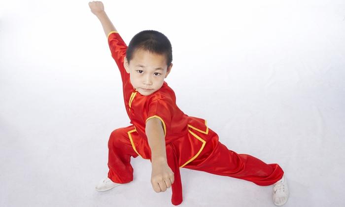 Professional Wushu Kung fu Academy - Hillsborough: Up to 83% Off Kung Fu at Professional Wushu Kung fu Academy