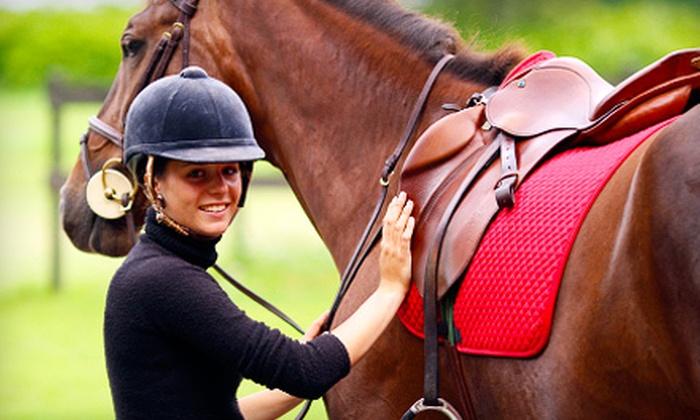 Matthias Arabians - Norwalk: $35 for Two Private Horse-Riding Lessons at Matthias Arabians in Norwalk ($70 Value)