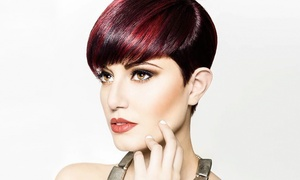 Taylor Andrews Academy of Hair Design: One or Two Haircuts with Conditioning at Taylor Andrews Academy of Hair Design (Up to 42% Off)
