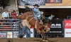 National Western Stock Show – Up to 61% Off Rodeo