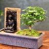 Bonsai-Baum mit Wasserfall