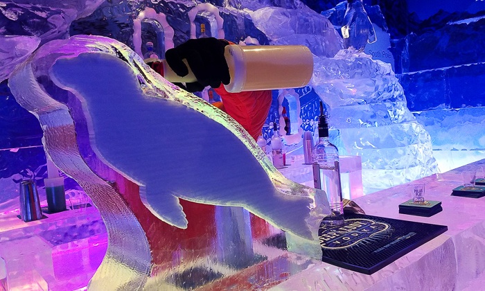 Polar Play - OdySea in the Desert: Admission for Two or Four or Birthday Party Package for up to 15 Kids at Polar Play (Up to 46% Off)
