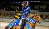 Medieval Times Dinner & Tournament - Parkdale: Four-Course Feast and Knights' Tournament for One, Two, or Four at Medieval Times Dinner & Tournament (42% Off)