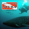 70% Off Introductory Scuba Lesson