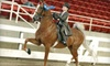 Ingleside Farm - Franklinton: $40 for Two 30-Minute Private Horseback-Riding Lessons at Ingleside Farm in Franklinton ($80 Value)