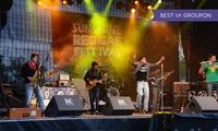 """Ticket d1 journée ou d1 week-end pour le """"Sunshine Reggae Festival"""" du 12 au 14 mai 2017 dès 11,20 € à Lauterbourg"""