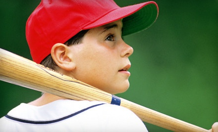 30-Minute Batting Cage Session (a $25 value) - Lansing Hit Club in Mason