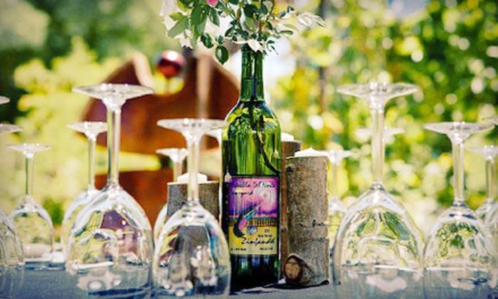 Estrella Del Norte Vineyard - Santa Fe: Wine Tasting for Two or Four People at Estrella Del Norte Vineyard in Santa Fe (Up to 54% Off)