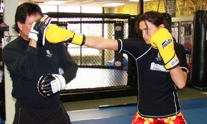 Trainers Elite: Two Weeks of Adult or Kids' Boxing or Martial-Arts Classes at Trainers Elite (73% Off)