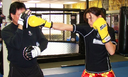 Two Weeks of Adult or Kids' Boxing or Martial-Arts Classes at Trainers Elite (73% Off)