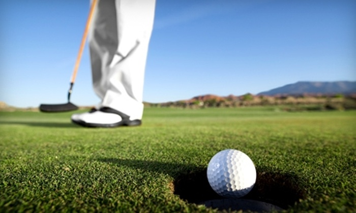 Hickory Creek Golf Course  - Ypsilanti: $189 for Eight 18-Hole Rounds of Golf and 10 One-Hour Clinics at Hickory Creek Golf Course in Ypsilanti ($1,082 Value)