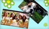 Bagettes: $19 for Medium-Sized, Personalized Bagettes Photo Bag