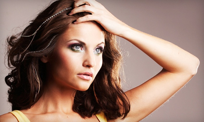 Salon DeCarlo - Collierville: Hair Feathers and Bling or a Haircut and Style at Salon DeCarlo in Collierville