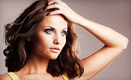 Salon DeCarlo: $40 Groupon Toward Hair Feathers and Hair Bling - Salon DeCarlo in Collierville