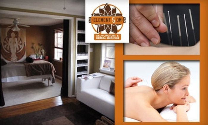 Element 5 OM - Greenway/ Upper Kirby: $25 for a 90-Minute Acupuncture Session at Element 5 OM
