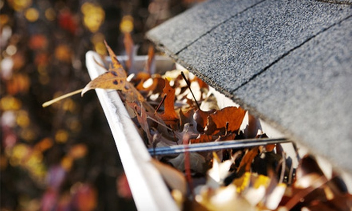 Prime Cut Landscaping and Lawn Care - Valley Street: Gutter-Cleaning Service for 2,500 or 5,000 Square Feet from Prime Cut Landscaping and Lawn Care (Half Off)