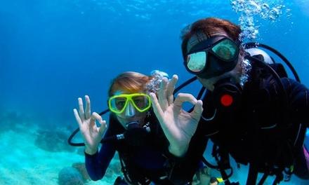 Bautizo de submarinismo para 1 o 2 personas en la playa desde 29,99 € enOceanos Diving Center