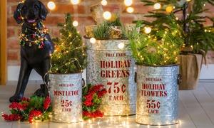 Holiday Planter Set (3-Piece)