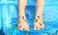 30 minutes de fish spa pour 1 ou 2 personnes dès 15 € chez Néovita Institut