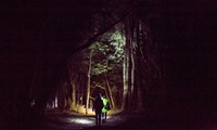 Nocturnal Guided Walking Tour for One ($40), Two ($79) or Four People ($155) with Real Rotorua (Up to $260 Value)