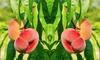Árbol de albaricoques