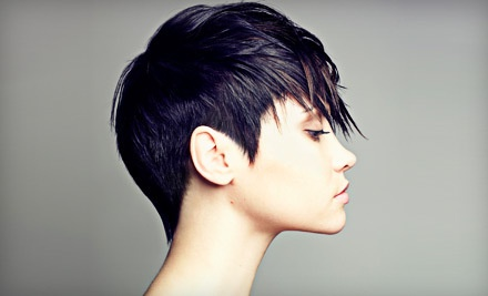 Shampoo, Haircut, Color, and Style - Women of Styles Salon & Day Spa in Cincinnati