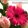 Half Off from Touched By Flowers