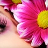 Up to 65% Off Makeup Services in Springfield