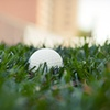 Up to Half Off Golf at Skyline Country Club