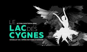 BEL3 asbl: Une place pour le ballet « Le Lac des Cygnes » au Théâtre Saint-Michel de Bruxelles dès 19,50 €