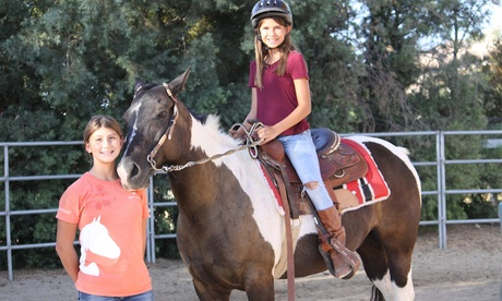 Up to 29% Off on Horse Back Riding - Training at Providence Heart Ranch