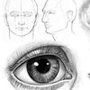 Porträt zeichnen Onlinekurs