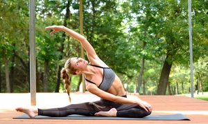 Up to 74% Off Hot Yoga, Hot Pilates, and Barre Classes at Balance Yoga Barre, plus 6.0% Cash Back from Ebates.