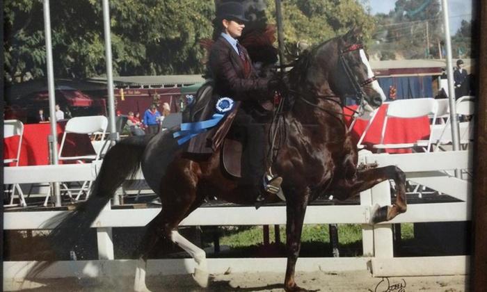 Laine Brook Farm - Southwest Oklahoma City: Three Horseback-Riding Lessons at Laine Brook Farm at Ron Horn Quarter Horses (67% Off)